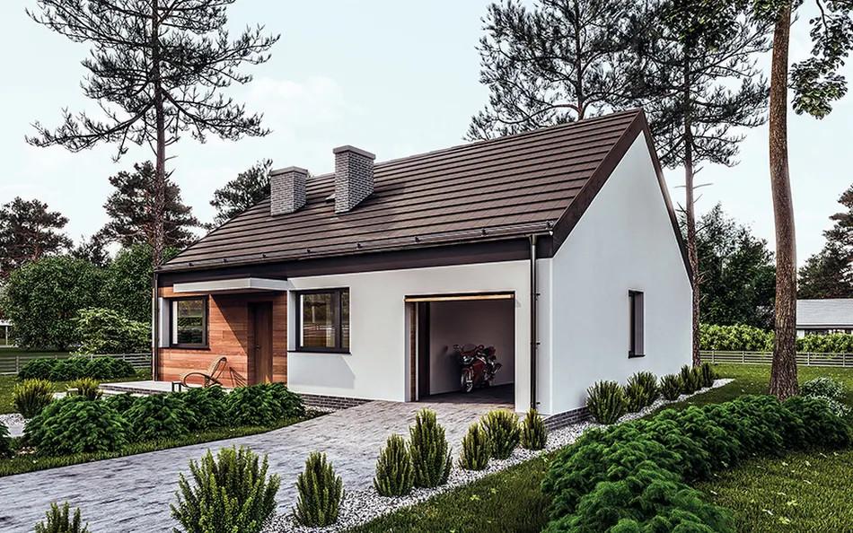 budowa domu Przejrzysty-wariant VI C365f (odbicie lustrzane) - New-House